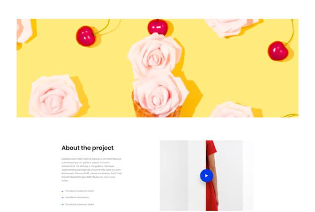 landing-page-single-portfolio-layout-11